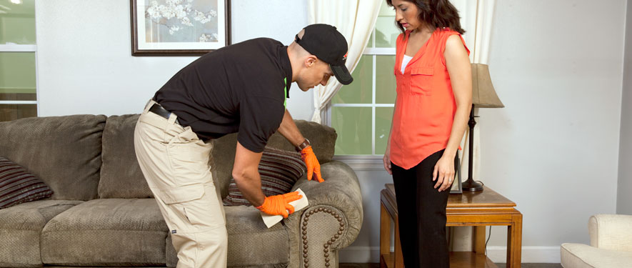 Avondale, AZ carpet upholstery cleaning